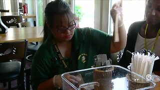Hands-on experience for Jupiter High School students with intellectual, developmental disabilities
