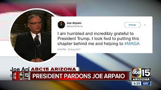 Donald Trump pardons Joe Arpaio - Video