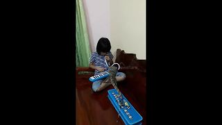 Meanwhile in Thailand a girl plays melodica for a monitor lizard - Video