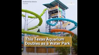 This Texas Aquarium Doubles as a Thrilling Water Ride