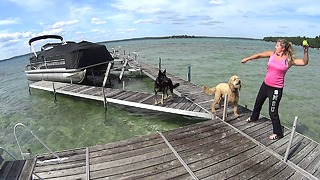 German Shepherd Slow-Motion Dock Jump at Higgins Lake  - Video