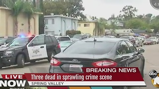 Three dead in Spring Valley shooting - Video