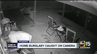 Alarms, cameras don't stop Phoenix thief who took gun, ammunition - Video