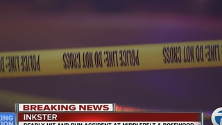 Police investigating after deadly hit-and-run in Inkster - Video