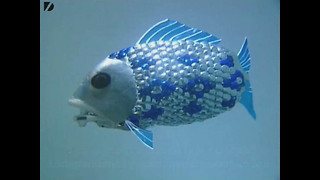 Robot Fish - Video