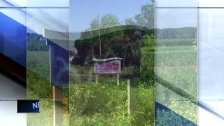 Signs vandalized in Hobart - Video