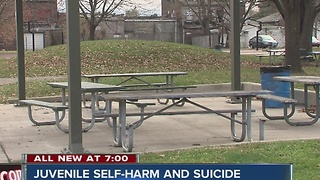 Two juveniles attempted suicide in Indianapolis last weekend - Video