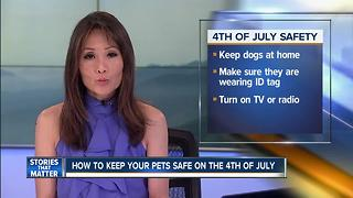 How to keep your 4-legged friends safe this 4th - Video