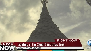 Lighting of the Sandi Christmas Tree - Video