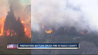 Pasco County Fire Rescue working brush fire in Hudson, residents asked to evacuate - Video