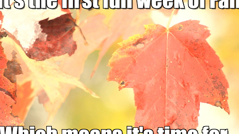 The first week of fall...