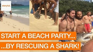 Party-Goers Rescue Distressed Shark at Beach - Video