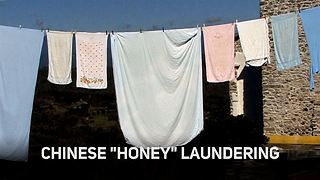 Not enough bees but too much honey? Blame China - Video
