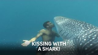 Breathtaking human-animal underwater encounters