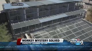 Mesa monkey facility mystery solved - Video