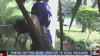 Thieves getting more creative to steal packages - Video