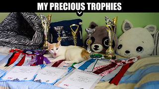 My Precious Trophies - Video