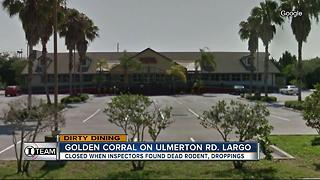 Dirty Dining: Golden Corral closes for 24-hours after 100+ rodent droppings were found near buffet - Video
