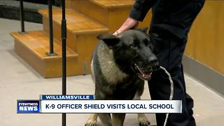 Officer Lehner's K-9 partner, Shield, will visit kindergartners - Video