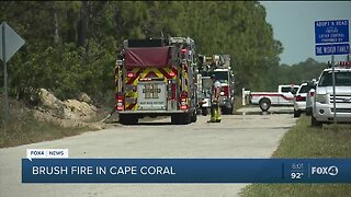Brush fire burns over 40 acres in Cape Coral