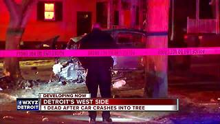 Driver killed when car crashes into tree on Detroit's west side - Video