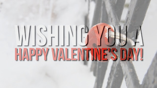 Valentines Day - Greeting 2 - Video