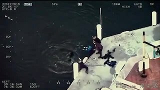 Baltimore Police rescue dog from harbor