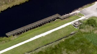 Chopper 5 video from Palm Beach County alligator attack