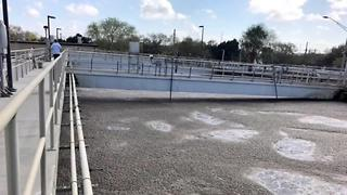 St. Pete sewage system upgrades | Digital Short - Video