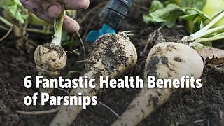 6 Fantastic Health Benefits  of Parsnips - Video