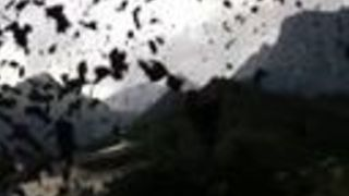Fast-Moving Debris Sweeps Through Town in Swiss Alps - Video