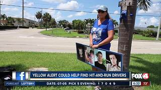 How 'Yellow Alert' helps police catch hit-and-run drivers - Video