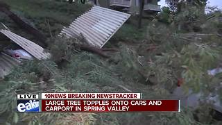 Large tree falls onto carport at Spring Valley apartment complex