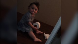 Baby Girl Pulls Toilet Paper Joke On Dad - Video