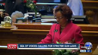 Sea of voices calling for stricter gun laws - Video
