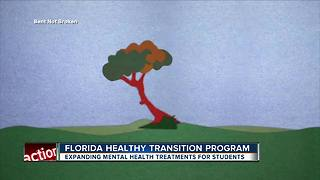Bent Not Broken program helps people with mental health issues - Video