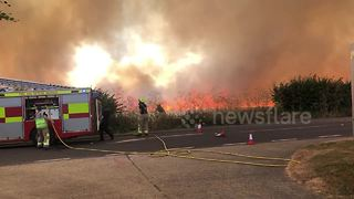 Firefighters tackle blaze near Windsor - Video