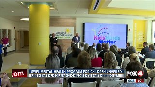 Mental health support plan for kids