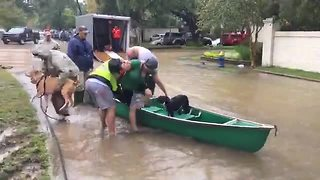 Ohio Task Force One rescues Hurricane Harvey victims in Houston - Video