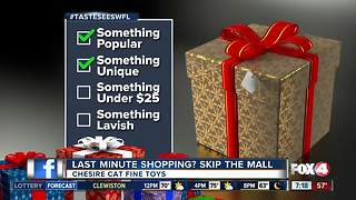 Toy Shopping for Christmas? Try these - Video