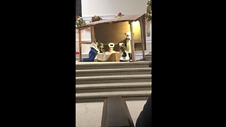 Little Actress Saves Jesus From The Manger - Video