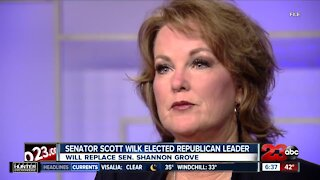 State Senator Shannon Grove out as Republican leader