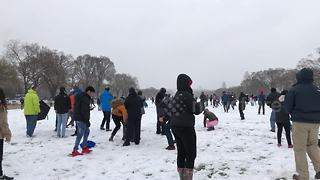 Massive snowball fight takes place in nation's capital - Video