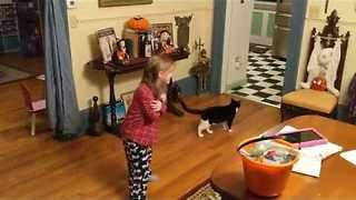 Cutest Girl in the World Adopts Beloved Cat - Video