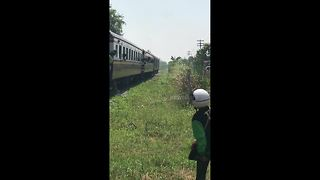 Escaped pony on railway tracks outruns oncoming train