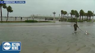 A man was seen walking his dog through flooding in St. Augustine from Hurricane Irma - Video