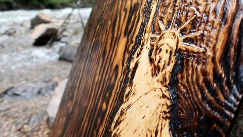 Incredible artwork is burned into wooden sheet with sun rays