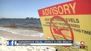 Dangerous Fecal Levels Close Beach - Video