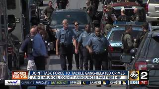 Anne Arundel County creates joint task force to combat gang-related crimes - Video