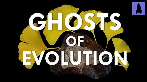 S1 Ep19: Ghosts of Evolution